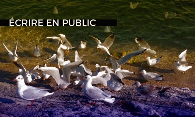blog écrire en public copie