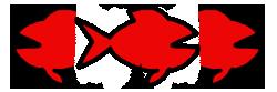 poisson circumquelle